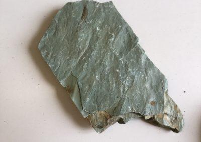 Impronte di ripple marks su argilla, facies di ambiente costiero (Monti Pisani)