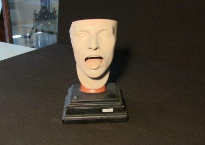 Modello della faccia