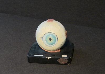 Modello dell'occhio