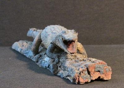 Piccolo coccodrillo tassidermizzato
