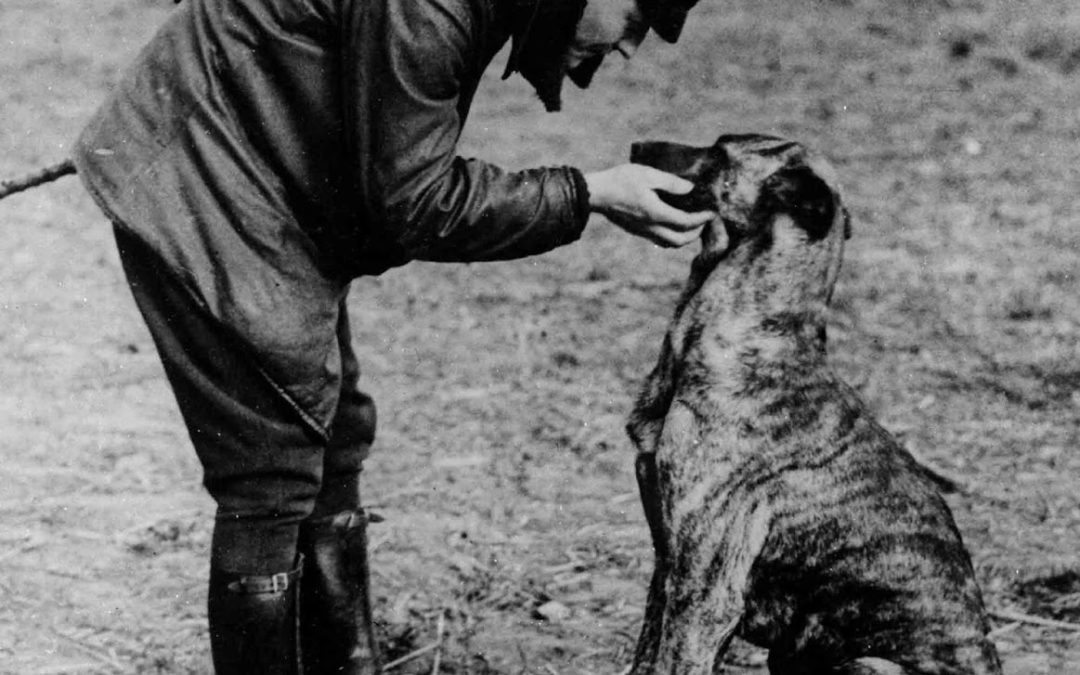 "Manfred von Richthofen ""The Red Baron"" petting his dog on an airfield, 1916"